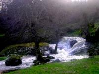 rivera 2007 (3)
