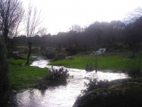 rivera 2007 (4)